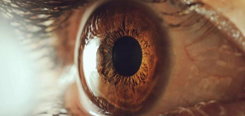 Göz Nakli Nasıl Yapılır?