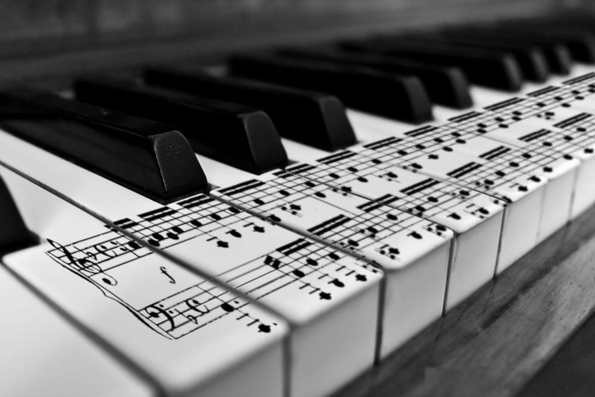 Müzik Bilimleri Nedir?